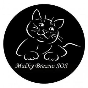 Mačky Brezno SOS